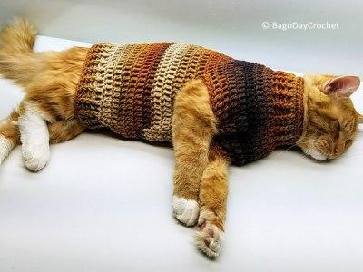 Stevens Striped Cat Sweater