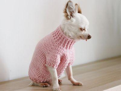 CROCHET Toy Chihuahua Sweater PATTERN