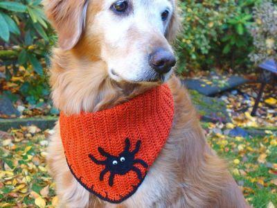 crochet Halloween Dog Bandana free pattern