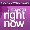 Your Online Yoga Studio