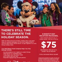 Spend your Christmas Vacation at Disney