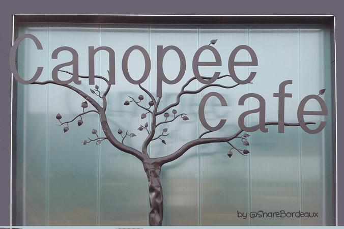 arbre-canopee-cafe-merignac---share-bordeaux