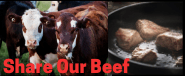 Share Our Beef
