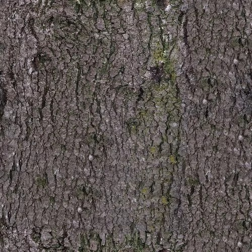 bark 17 Dif - wood, bark - tree bark, seamless, bark
