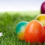 5000 eggs
