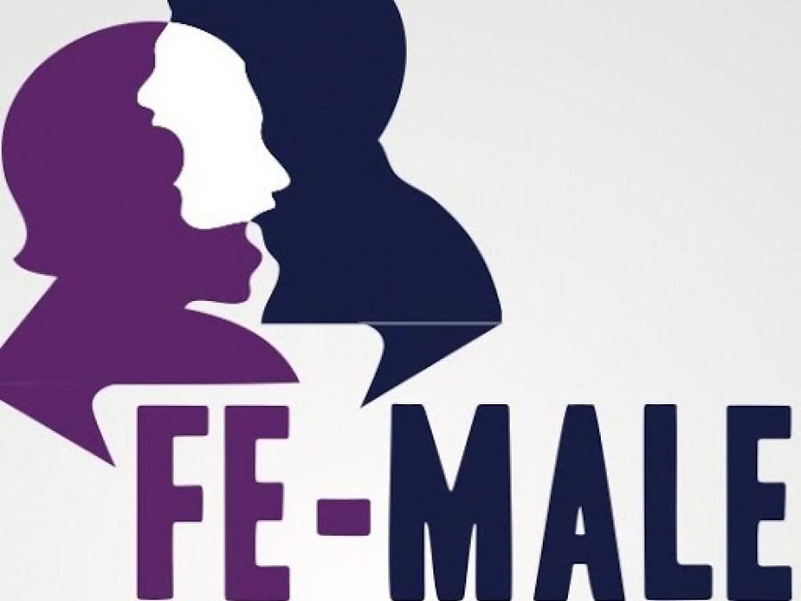 هكذا رُصدت انجازات جمعية FE-MALE  إعلاميا في مواجهة تسليع وتنميط صورة النساء في الإعلام والإعلان
