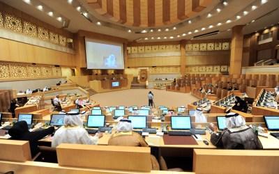 خمسون بالمئة نسبة النساء في المجلس الاتحادي الإماراتي المقبل