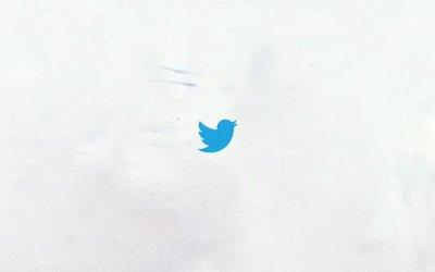 تويتر يفعّل خاصية العربية مؤنث لمخاطبة النساء العربيات