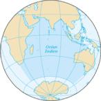 Requins de l'océan Indien et de La Réunion