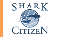 Shark Citizen