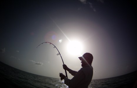 The basics of land-based shark fishing