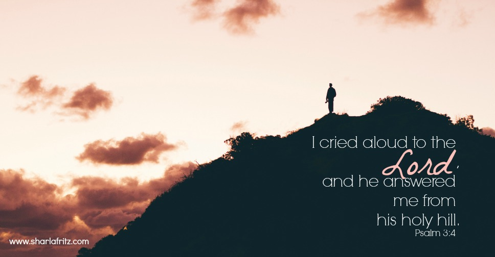 Image result for psalm 3