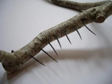 Sharon Adams_Hazel Thorns 2012 detail