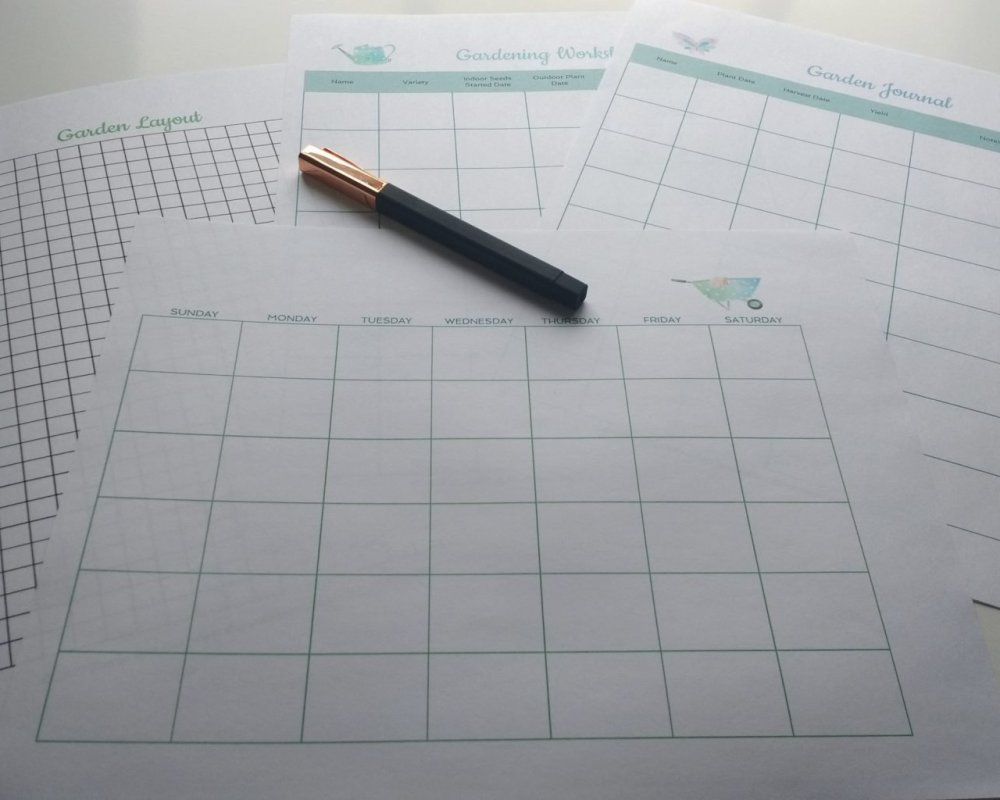 Garden Planning – How To Plan Your Garden Before You Plant