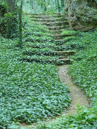 path-178804_1280