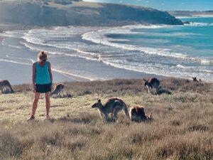 Meet my new furry friends at Emerald Beach