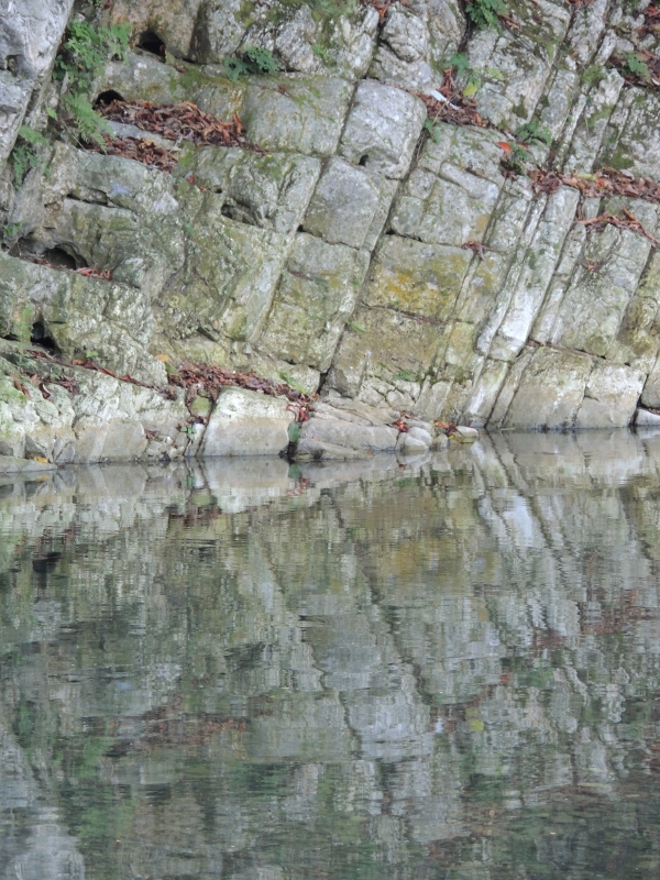 Buff Bay River, Reflections 2