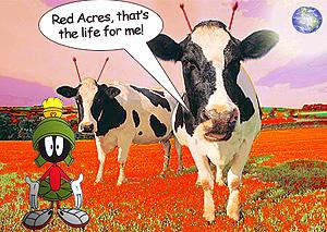 martian cows