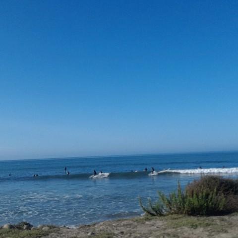 #50 Shoreline