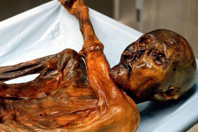 Image showing 'Otzi The Iceman' - a 5000 + year old mummy found with tattoos in 1991, in the Italian Alps