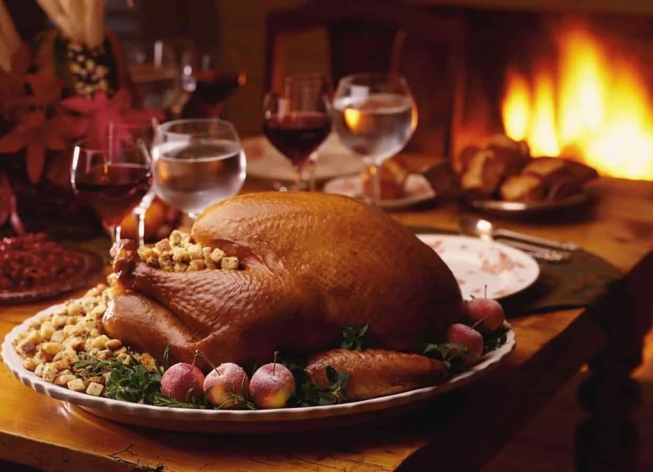 carving the turkey with a electric knife
