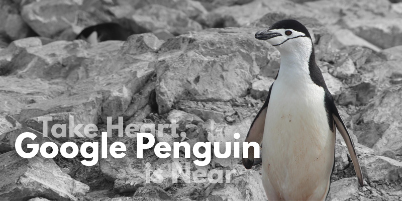 Take Heart, Google Penguin is Near - Header