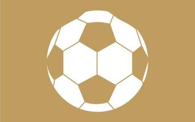 Inter Form Football