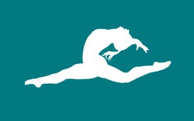 Annual Schools Gymnastics Competition