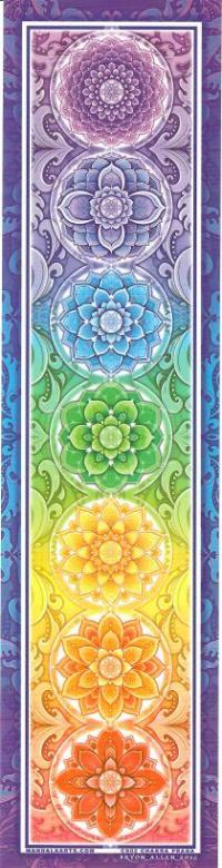 Chakra Prana Bumper Sticker | Shasta Rainbow Angels