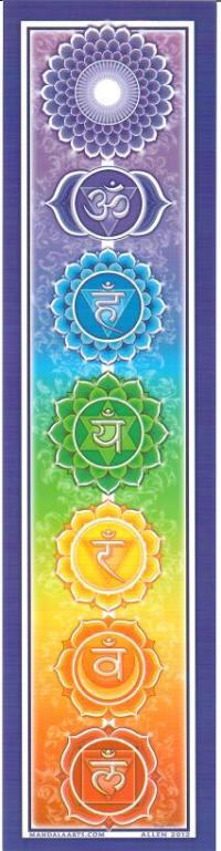 Rainbow Chakra Bumper Sticker | Shasta Rainbow Angels