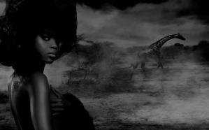 Shaun Alexander Photography
