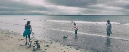 02-beach2