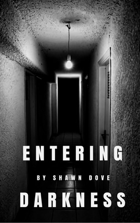 Book cover image for Entering Darkness, a suspense thriller novel by Shawn Dove.