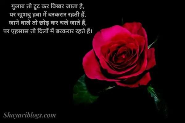 Valentine shayari hindi image
