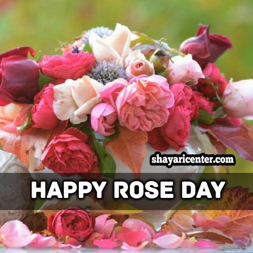 wedding shayari for happy day rose
