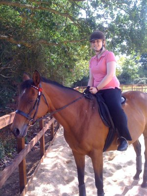 Whistlejacket and my main weight-loss motivation