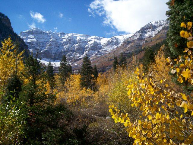 Alpine Loop Utah summer mountains trees