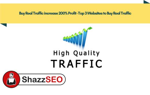 Buy Real Traffic increase 200% Profit -Top 3 Websites to Buy Real Traffic