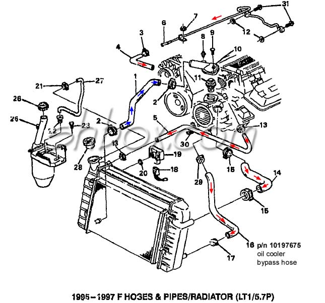 LT1 swap radiator hose questions (with diagram for future