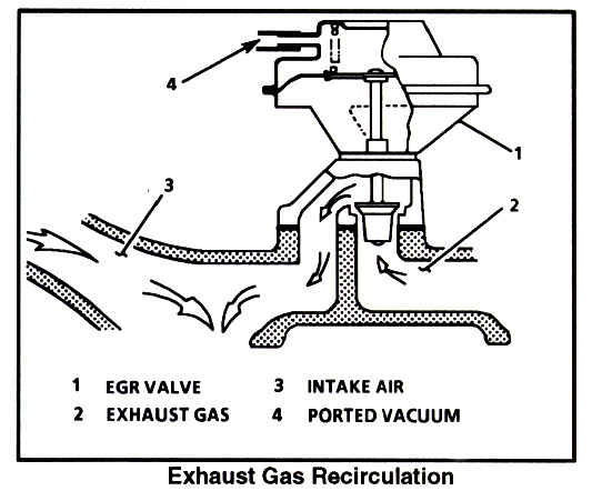 Egr Wiring Diagram Foxbody, Egr, Get Free Image About