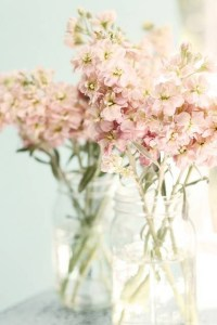 blog flower mason jars