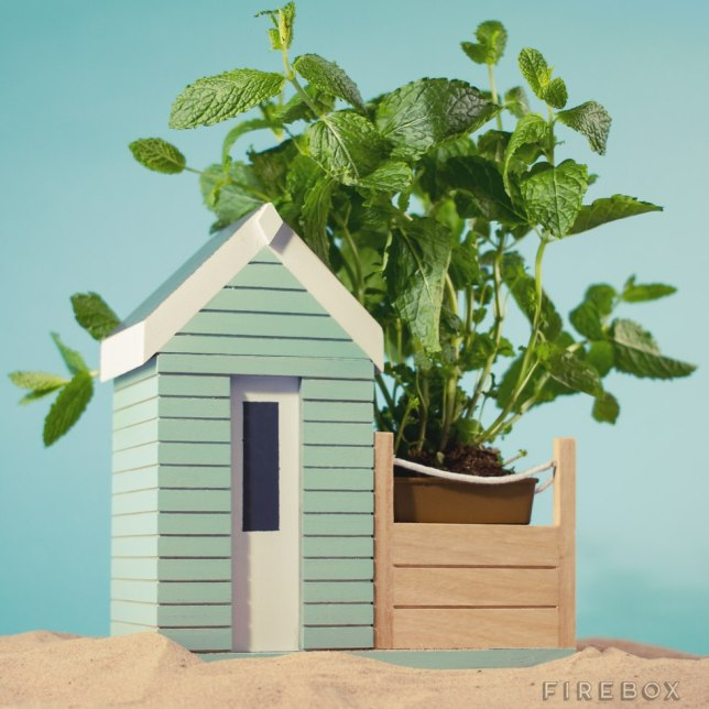 beachhut-firebox