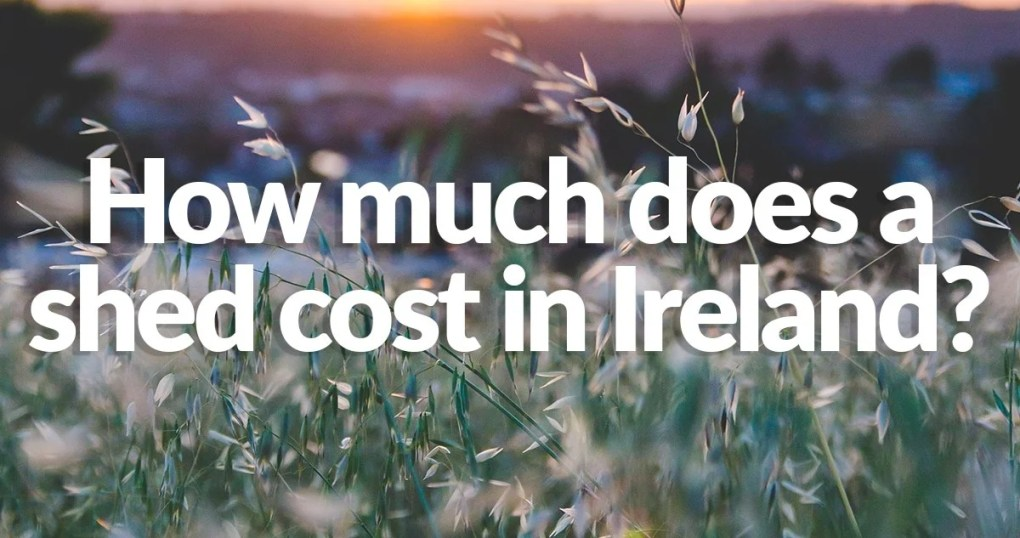 How much does a shed cost in Ireland?