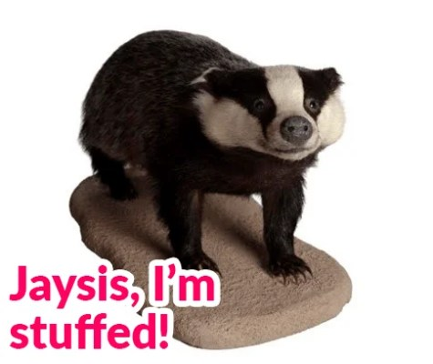 a picture of a stuffed badger on a plinth with the text 'Jaysis, I'm stuffed' written underneath.
