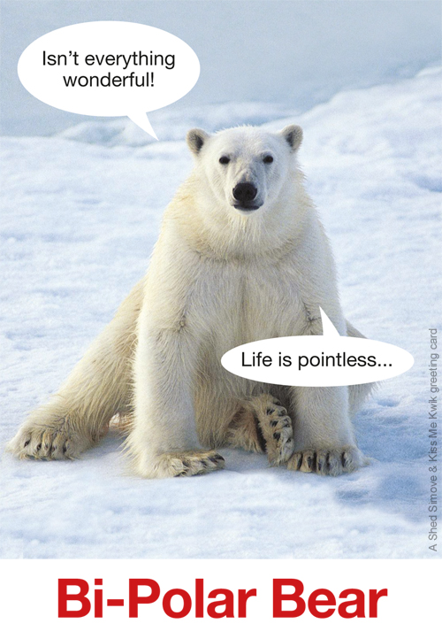 'Bi Polar Bear' Greeting Card Shedsimove Com