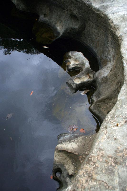 Rere Rock Pools