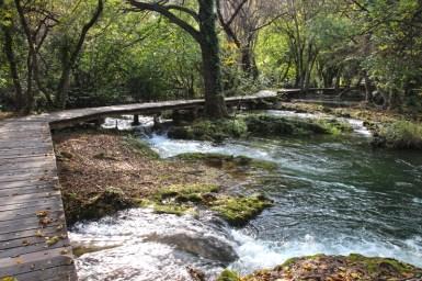 Holzwege führen durch den Nationalpark