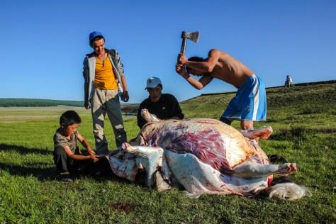 Yak-Schlachtung am Abend
