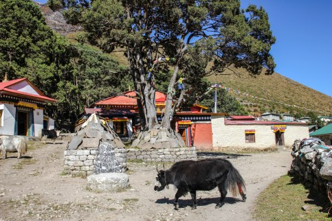 Kloster in Khumjung
