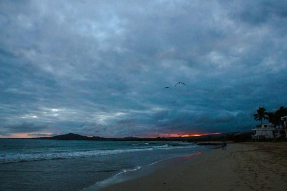 Strand auf Isla Isabela